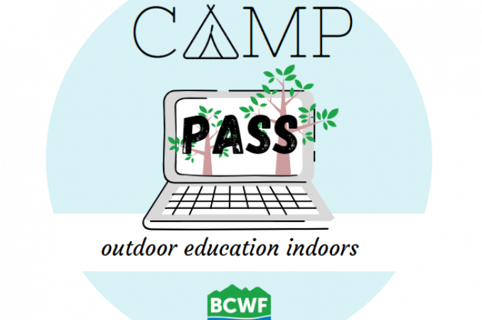Camp-Pass-1b-no-background.png
